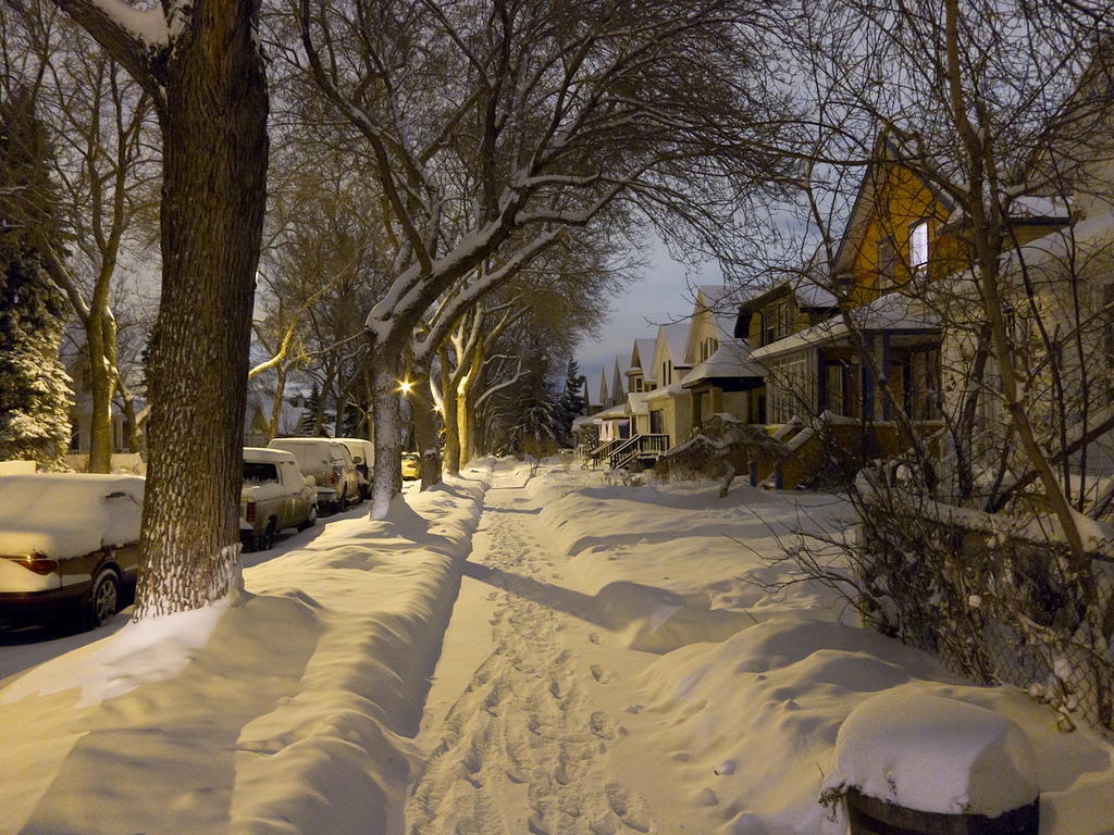 Early 20th century houses face an elm-lined and snow-covered street in Mill Creek on Edmonton's southside. © Tom Young 2010