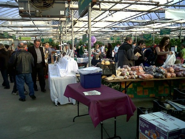 Image courtesy of Salisbury Farmer's Market