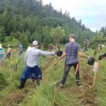 Volunteers work in MacKinnon Ravine near Government House planting Edmonton's first food forest. Photo via Edmonton Journal