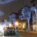 104 Street Lights. Photo by Paul Giang
