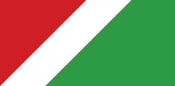 christie-flag
