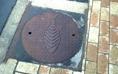 Ottawa sewer grate