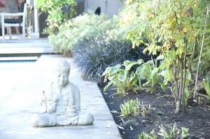 The serene garden. Image Courtesy of author.